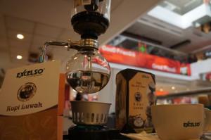 kopi luwak, uno de los cafés más caros del mundo