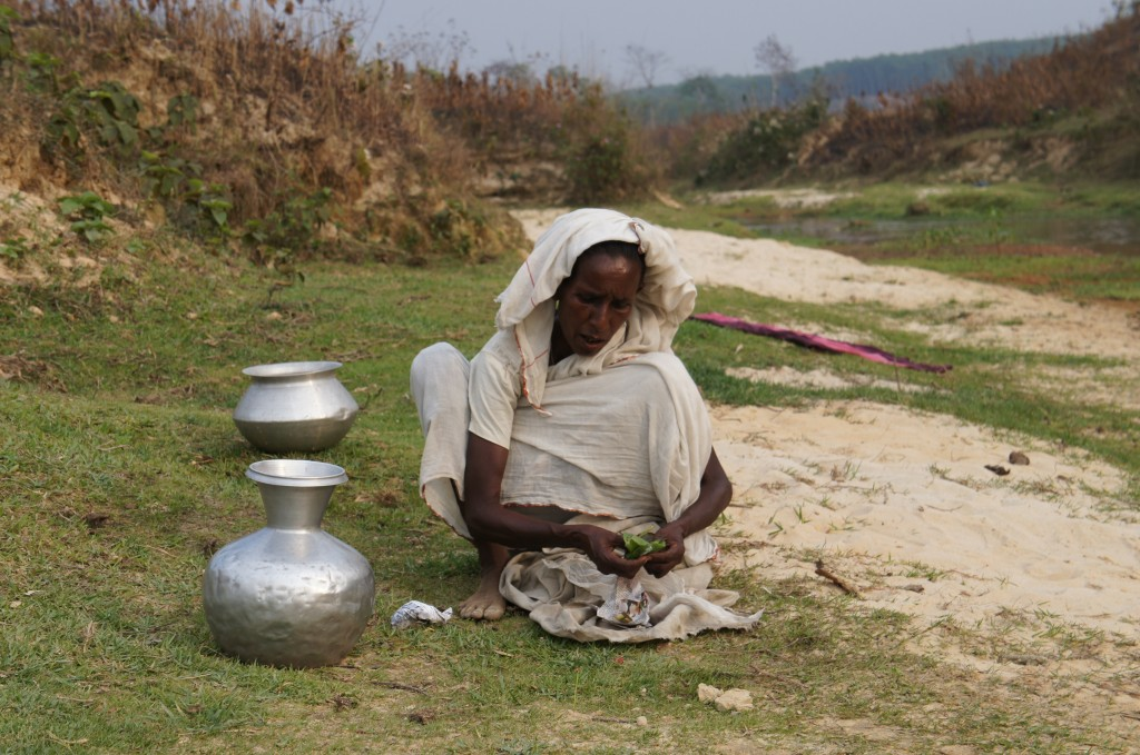 Bengali woman working on the tea leaves