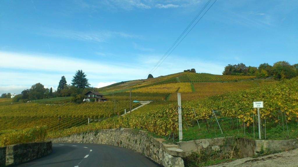 Lavaux turismo Suiza