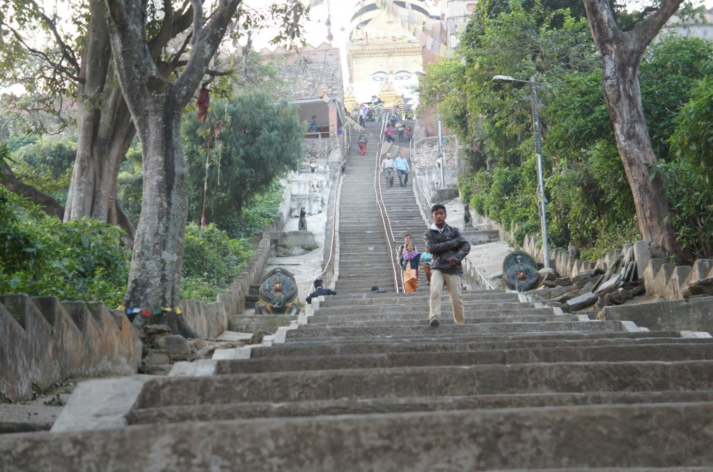 On the way up to the Swayambhunath temple, a temple led by monkeys!