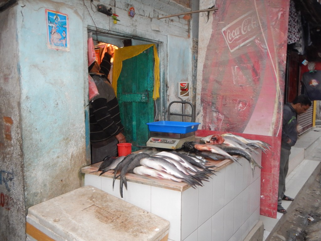 Fresh fish shop... Fish is shown open-air, without separation in between the fish and the motorbikes / cars