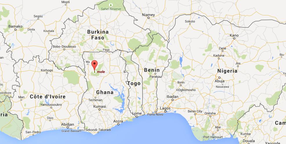 Parque Nacional Mole, Ghana